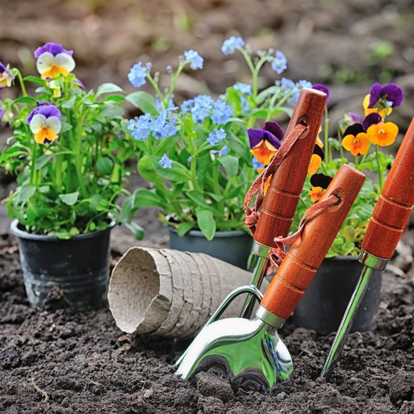 jardineria-en-rivas-vaciamadrid